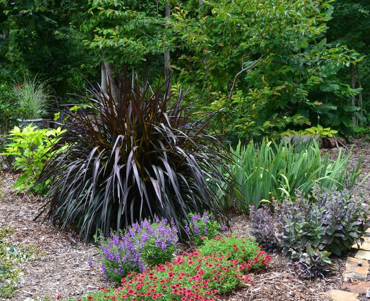 Lots going on hidden hills garden for Purple grass