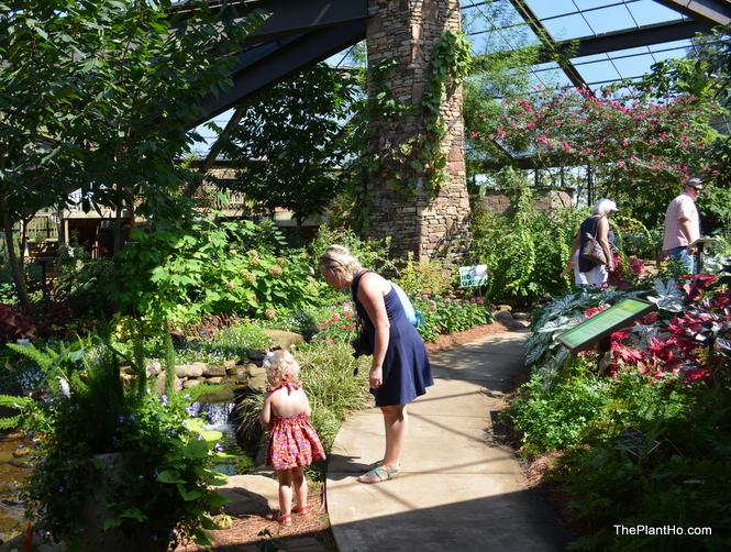 Huntsville Botanical Gardens butterfly house