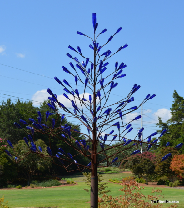Bottle tree, Huntsville Botanical Garden